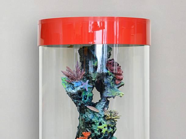 Невероятно красивый аквариумный комплекс на 130л, фотография 2