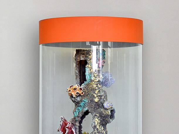 Изумительный аквариум для рыбок на 130л, фотография 7