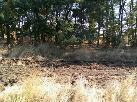 10,5 соток земли продам в Ростовской области, фотография 1