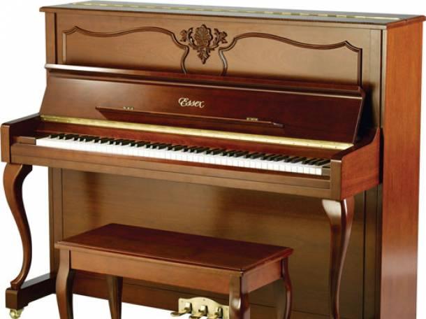 Настройка пианино и роялей, ремонт любой сложности, фотография 1