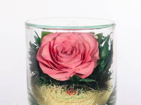 Цветы натуральные в герметичных вазах , доставка, фотография 2
