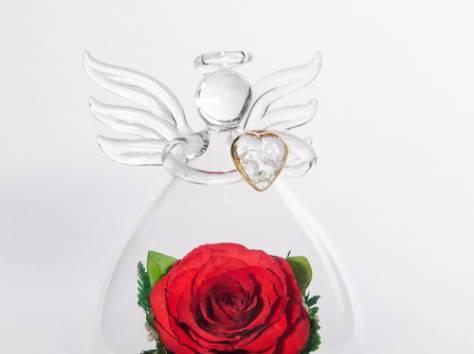 Цветы натуральные в герметичных вазах , доставка, фотография 3