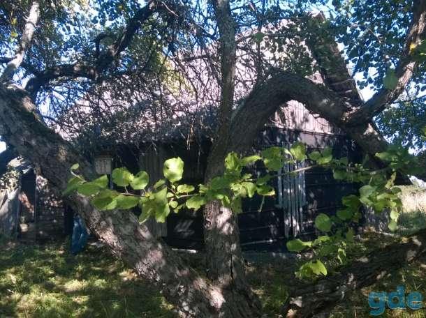 Зимний домик на хуторе, 40 соток земли, Тараскино, Палкинский р-н, фотография 4