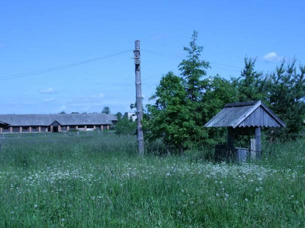 Продаю дачу-дом с большим участком (деревня Ивановское), фотография 4