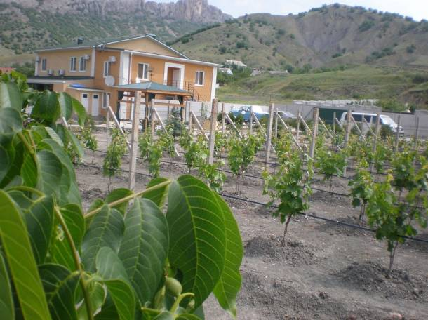 Продается эко-усадьба  в экологически чистом и живописном месте., фотография 1