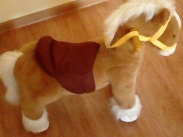 музыкальная лошадка, фотография 1