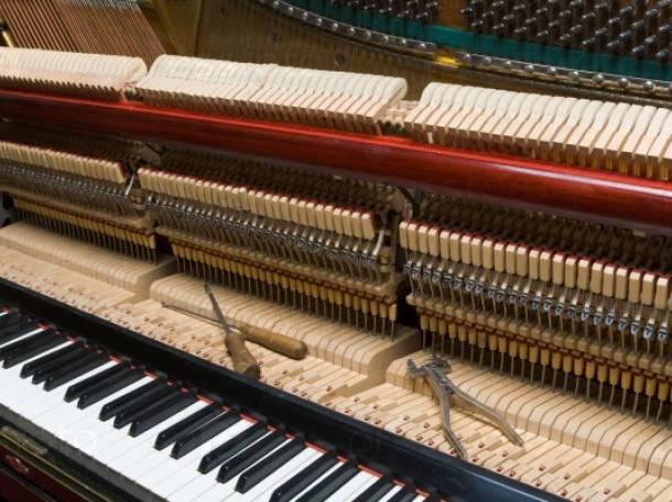 Настройка, ремонт пианино, фортепиано в Каменногорске, фотография 1