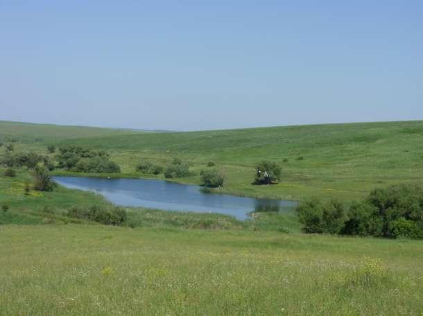 Продам земельный участок 40га с 4 зарыбленными прудами, фотография 11