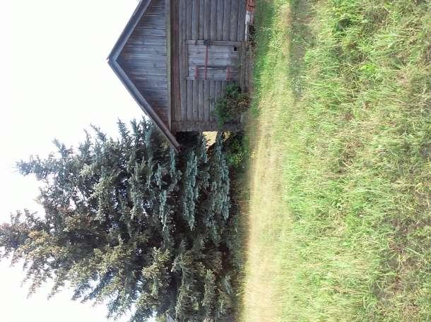 Продается жилой дом в с,Пурдошки, фотография 4