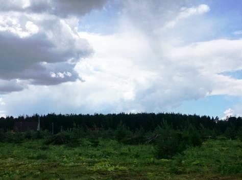 Участки у леса, ПГТ, фотография 5