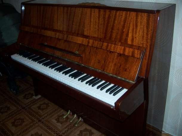 Настройка, ремонт пианино, фортепиано в Шаране, фотография 1