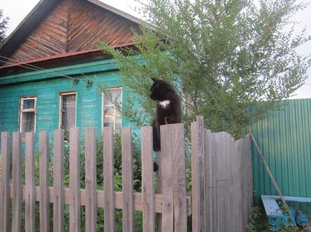 Дом в деревне, фотография 2