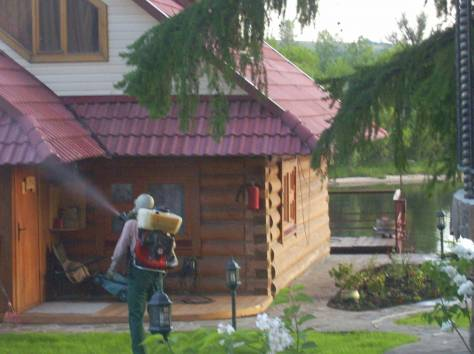 обработка выведение клещей,комаров, короеда,ос и клопов в Рязани и Рязанской области, фотография 1