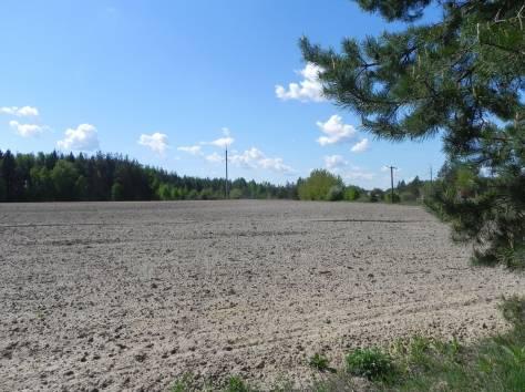 Земли для сельскохозяйственного производства 68,8 га, фотография 3