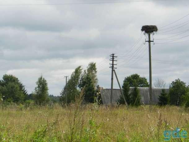 Дом с хозяйством хуторного типа, 1,8 Га. земли, фотография 7