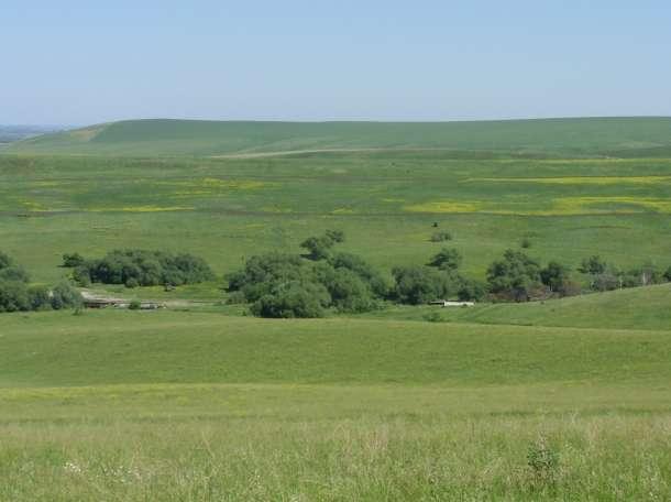 Продам земельный участок 40га с 4 зарыбленными прудами, фотография 5
