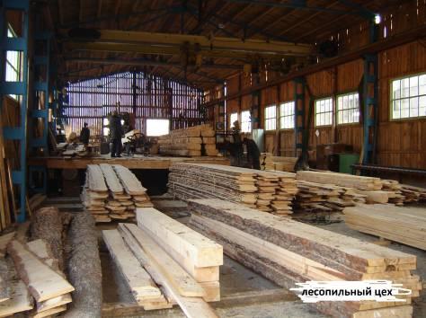 Продам деревообрабатывающее предприятие, фотография 1