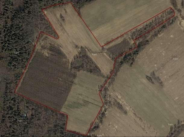 Продажа земельного участка 14,3 га в КФХ вблизи озера площадью 70 га, фотография 8