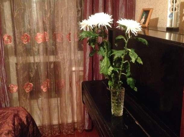 Сдам 3-х комнатную квартиру посуточно в г.Сосенский, фотография 8