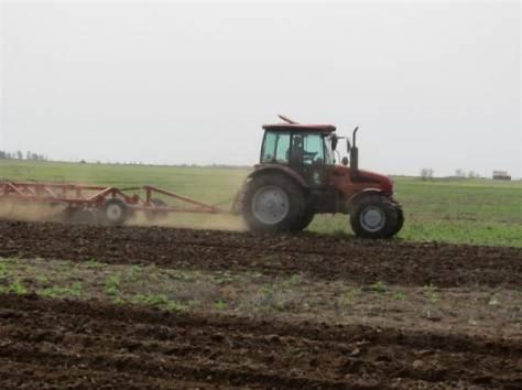 Продажа  прибыльного  Крестьянско-Фермерского хозяйства в Ростовской обл., фотография 4