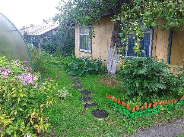 Продам сад , фотография 1