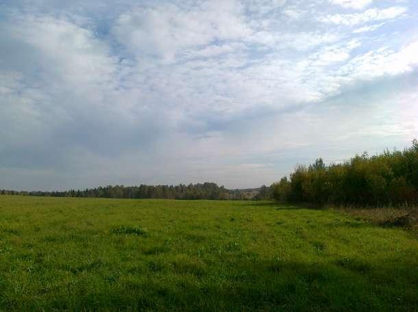 Продажа земельного участка 14,3 га в КФХ вблизи озера площадью 70 га, фотография 2