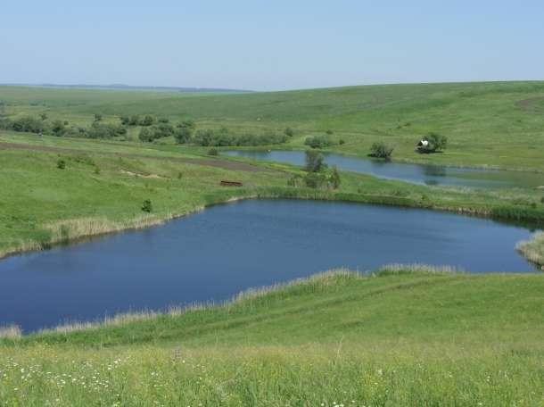Продам земельный участок 40га с 4 зарыбленными прудами, фотография 2
