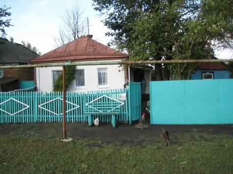 Продам дом Прохоровский р-н с. Кривошеевка, фотография 1