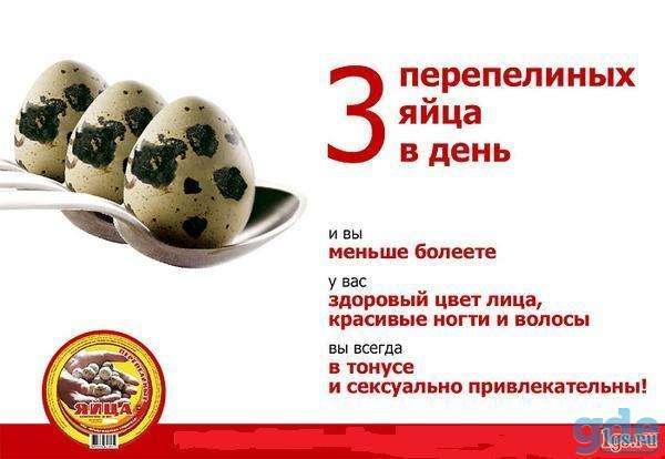 Перепелиные яйца и потенция отзывы