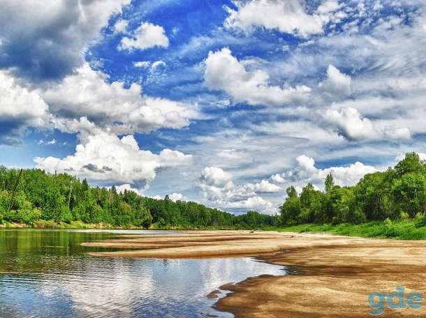Продам земельный участок 36 соток, область, Ветлужский район, д. Костливое, фотография 8
