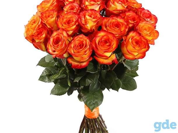Цветы букет 25 роз Эквадор Премиум, фотография 5