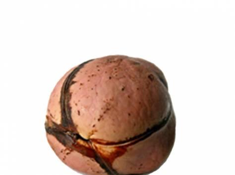 Орех Кола. Прямые поставки продукции из Западной Африки. Энергетик и средство для похудения., фотография 2