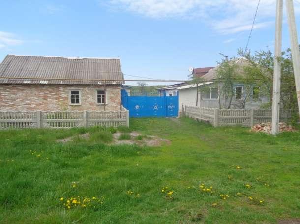 Продается дом в Волоконовском районе с. Борисовка, фотография 3
