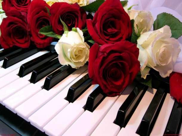 Настройка, ремонт пианино, фортепиано в Афанасьево, фотография 1