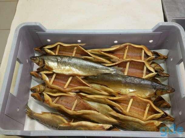 Рыба накормлю всех, фотография 3
