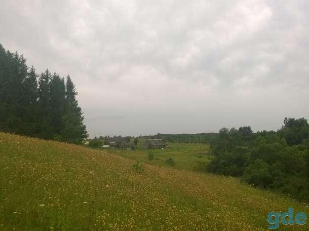Крепкий добротный дом рядом с живописным озером, Володькино, Палкинский р-н, Псковская область, фотография 3