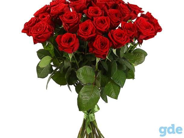 Цветы букет 25 роз Эквадор Премиум, фотография 4
