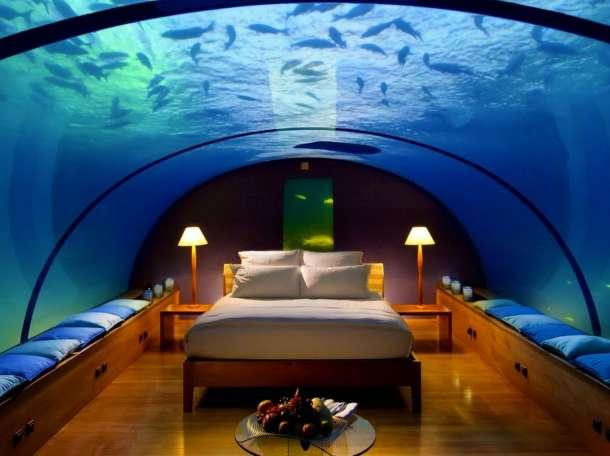 Профессиональное обслуживание аквариумов., фотография 1