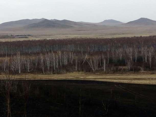 земля сельхозназначения, фотография 3