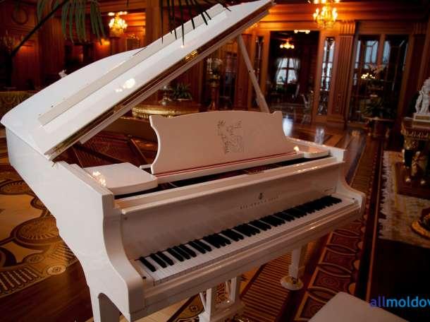 Настройка, ремонт пианино, фортепиано в Палане, фотография 1