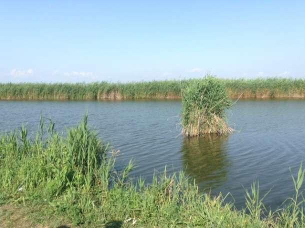 Благоустроенные пруды в Краснодарском крае., район, ст. Мингрельская, фотография 5