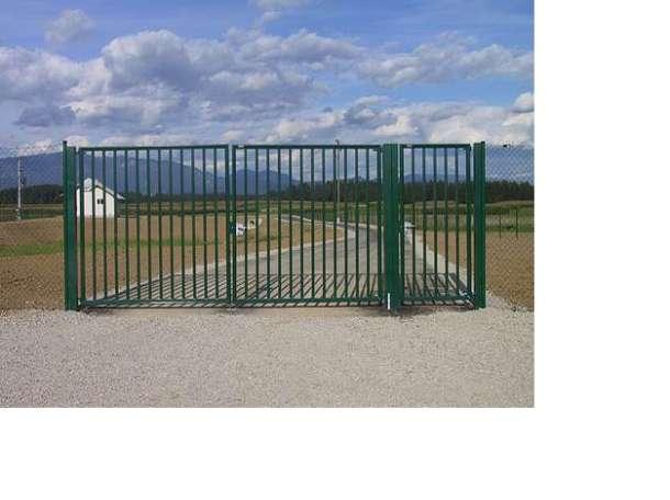 Ворота Дно, фотография 1