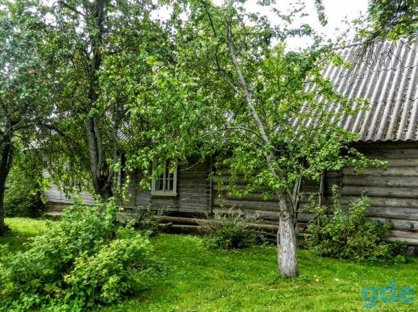 Дом с хозяйством хуторного типа, 1,8 Га. земли, фотография 3
