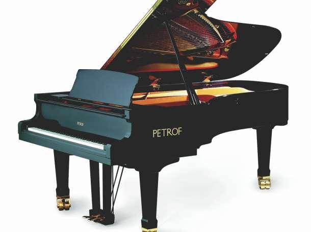 Настройка, ремонт пианино, фортепиано в Кологриве, фотография 1