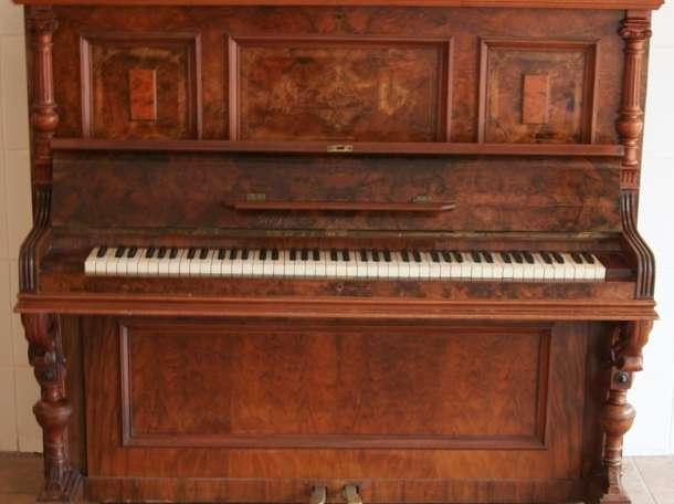 Настройка, ремонт пианино, фортепиано в Абане, фотография 1