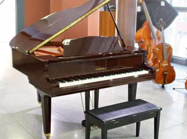 Настройка, ремонт пианино, фортепиано в Алексеевском, фотография 1