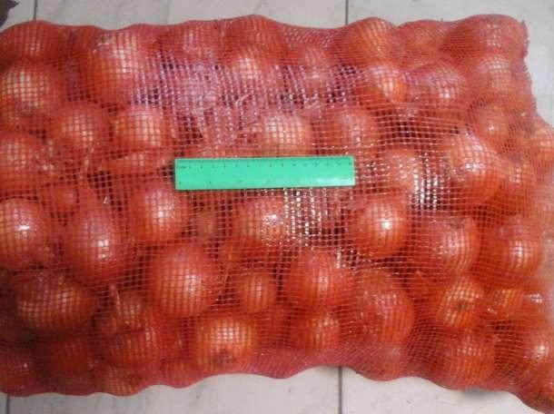 Продаем лук оптом от 10 тонн, фотография 2