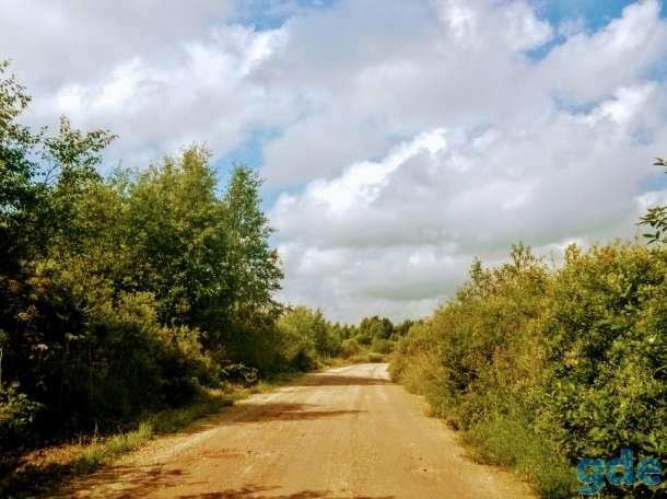 Выбор земли в Псковской области, Мельница, Палкинский р-н,, фотография 1