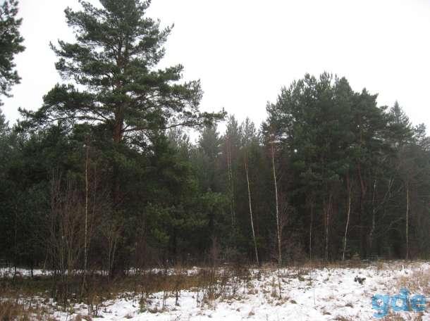 Земельный участок в пригороде г.Гаврилов-Ям на берегу р.Которосль, фотография 4